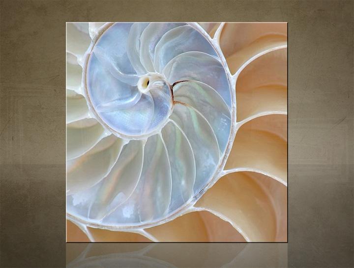 Obraz na stěnu ČTVEREC Abstraktní obrazy na plátně