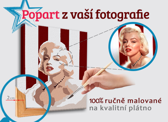 Malovaný POP Art obraz z fotografie - ČTVEREC foto obrazy